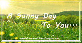 A sunny day to You! Everyday greeting card. New day. Yellow Flowers. Yellow sky. Bright sun. Green grass. Free Download 2021 greeting card