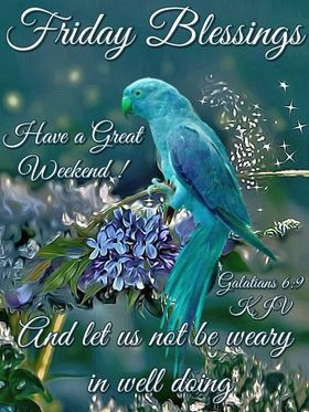 Friday blessings! Ecards 2018. Wishes. Good friday 2018. Have a Great Weekend! Bible quotes. Galatians 6 : 9. New ecard. Big blue parrot. Purple lilac. Free Download 2021 greeting card