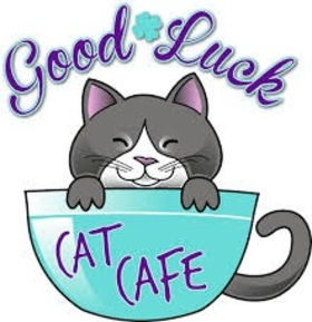 Good Luck. Cat cafe. Good Luck... good day... lucky day... wishes... A Cat... A cute cat... A Funny cat... A blue cup... Free Download 2021 greeting card