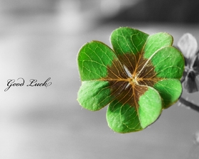 Good Luck. Shamrock. Good Luck... Be happy... special... thinking of you... Lots Of You... New job... Thank you... Memories Free Download 2021 greeting card