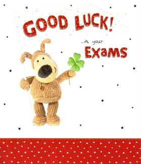 Good Luck in You exams! Ecard for everybody! Good Luck... Good Luck in your exams... Toy dog... red colour... green shamrock. Free Download 2021 greeting card