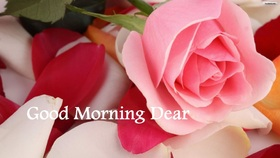 Good Morning, Dear! Rose is very nice! Beautiful ecard. Very nice rose. New ecard for woman. A delicate flower. Pink rose. Free Download 2021 greeting card