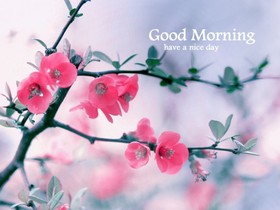 Good Morning to the dearest people. New ecard. Good Morning. Pink Flowers. Have a nice day. A tree. Free Download 2021 greeting card