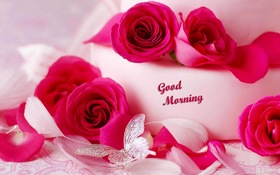 Good Morning for a girl. New ecard for free. Good Morning. Pink Flowers. Big Pink Roses. Free Download 2021 greeting card