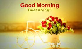 A Morning bouquet for a woman. New ecard for free. Good morning. Flowers. Red Roses. Bike. Sunrise. Free Download 2021 greeting card