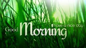 Good Morning in green. New ecard for free. Good Morning. Have a nice day. Green green grass in the morning. Free Download 2021 greeting card