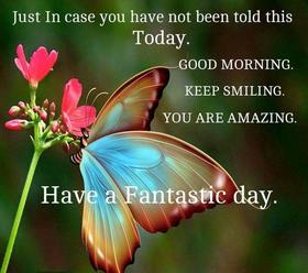 Have a fantastic morning and day. New ecard. Good Morning. Wishes. Pink Flowers. Butterfly. Free Download 2021 greeting card