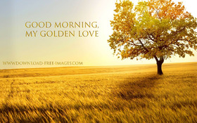 Good Morning, my golden love! Golden autumn in your life. Nice. Nature. Free Download 2021 greeting card