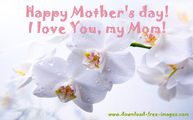 Happy Mother's day! I love You, my Mom! Warm wishes. Nice ecard. Free Download 2019 greeting card