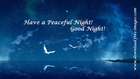 Have a Peaceful Night! Good Night! Good Night and Sleep Tight! This fabulous night. Favorite cartoon ecard. Night sky. The beautiful Sea. White seagull and calm sea. Free Download 2021 greeting card