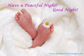 Have a Peaceful Night! Little baby feet :) A little chamomile. Free Download 2021 greeting card