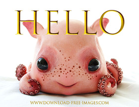 I bring greetings from a young octopus named Yana :) Free Download 2021 greeting card