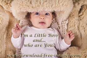 I'm a Little Boss and... who are You? :) Good Morning! A Boy. A little kid. A little baby. Free Download 2021 greeting card