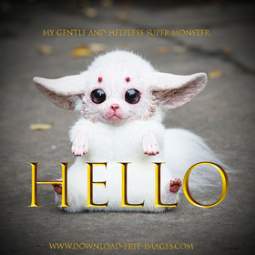 My Gentle and Helpless White Monster. Hello! A fantasy series of golden cards. White fur, black eyes, and bloody adorable. Gremlins. Free Download 2021 greeting card