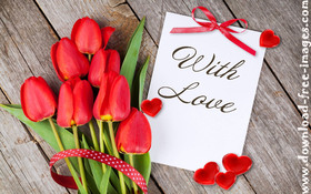 Red tulips with Love! I love You! They say
