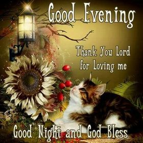 Thank You, Lord, for loving me. Good Evening, Good Night and God Bless. Cute Cat. Sunflower. Street lamp. Free Download 2021 greeting card