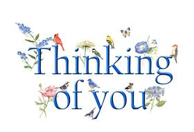 Thinking of You! Color ClipArt. JPEG. Flowers. Butterfly. Birds. Blue text. Free Download 2021 greeting card