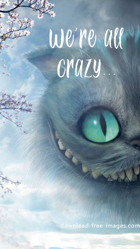 We're all crazy. New ecards 2018 for free. Incredibly beautiful fairy ecards. A Cheshire cat. Super ecards 2018. Extraordinary ecards. Cartoon Pictures. Free Download 2018 greeting card