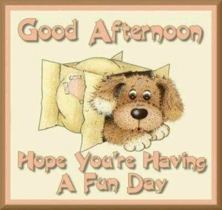Good Afternoon Greeting Cards Free Download Cute Images