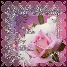 Enjoy Your Day. New ecard. Good morning wishes. Enjoy your day. God bless you. Blessing from God cards. Blessing wishes. Rose background. Free Download 2019 greeting card