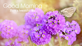 Good Morning card for sister. Have a beautiful day! Beautiful flowers for You. Good morning! Have a nice day, great mood! Let the morning sun charge positive energy for the whole day! Free Download 2021 greeting card
