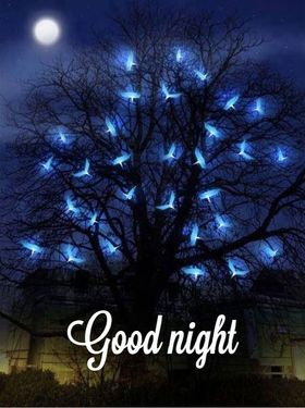 Good Night. Little moon. Moths fly at night. Tree. Good Night... wishes... sweet Dream... Free Download 2021 greeting card