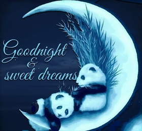 Good Night and sweet Dream! Two pandas. Moon. Good Night... wishes... sweet Dream... Late at night, everyone's asleep. Free Download 2019 greeting card