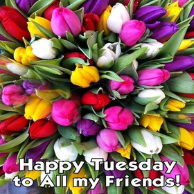 Happy Tuesday to all my friends. New ecard. Tuesday postcard for friends. Happy Tuesday for all of my friends. Tuesday wishes and postcards. Free Download 2019 greeting card