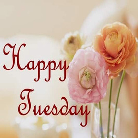 Beautiful Tuesday. New ecard. Happy Tuesday wishes. Happy Tuesday. Pions. Beautiful Tuesday flowers. Tuesday postcard for girls. Free Download 2019 greeting card