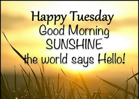Happy Tuesday! New ecard for free. Tuesday morning. Happy Tuesday. Good morning sunshine the world says Hello! Free Download 2019 greeting card