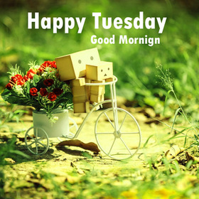 Cute Tuesday. New ecard. Tuesday. Cute bicycle. Happy Tuesday and Good Morning. Green tone. Have a nice day. Tuesday wishes for friends, family, soulmates. Free Download 2019 greeting card