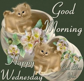 Happy Wednesday, dad! God bless you. New ecard. Cards with kittens for relatives. Dear father, good morning. The morning of Wednesday is already the middle of the week, And getting up every day is harder. Free Download 2021 greeting card