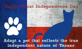 Texas independence day... Greeting card for you... Adopt a pet that reflects the true independent nature of Texans. Free Download 2019 greeting card